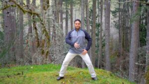 Qigong for vitality, gathering the qi practice
