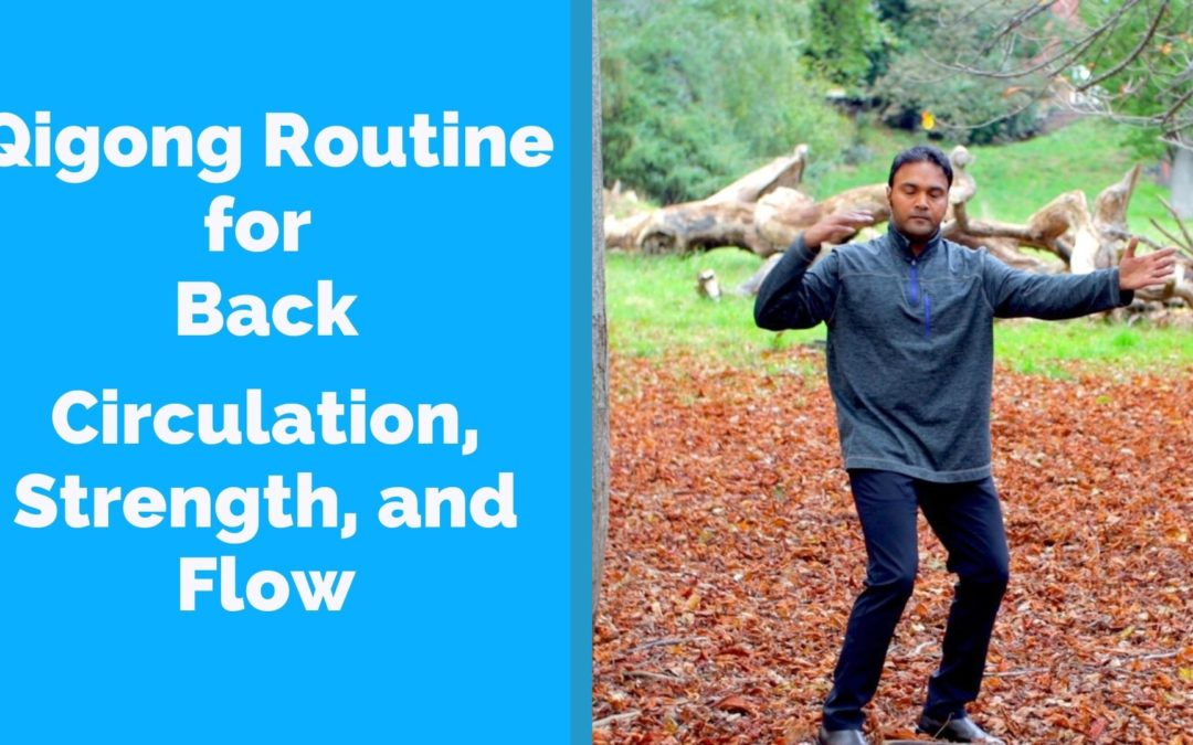 Qigong for Back Strength and Circulation