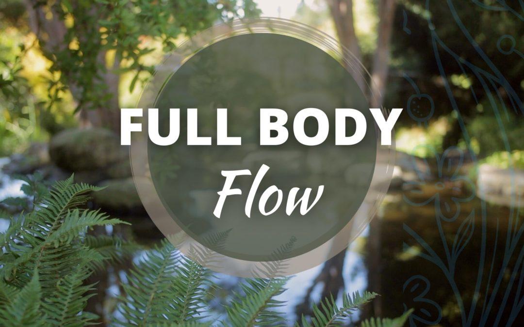 Full Body Flow Qigong Program